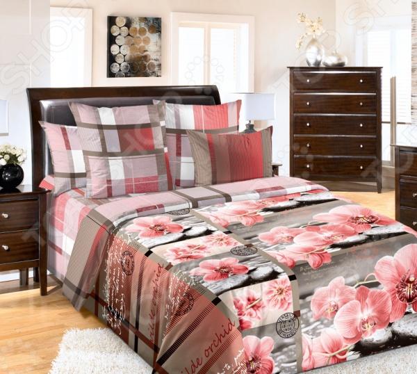 Комплект постельного белья Королевское Искушение с компаньоном «Дикая орхидея» искушение ирландца