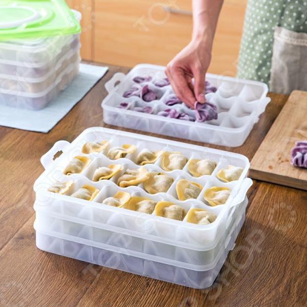 Емкость для хранения пельменей Dumpling Fresh Box. В ассортименте