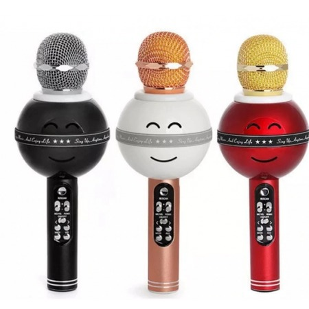 Купить Микрофон для караоке WS 878