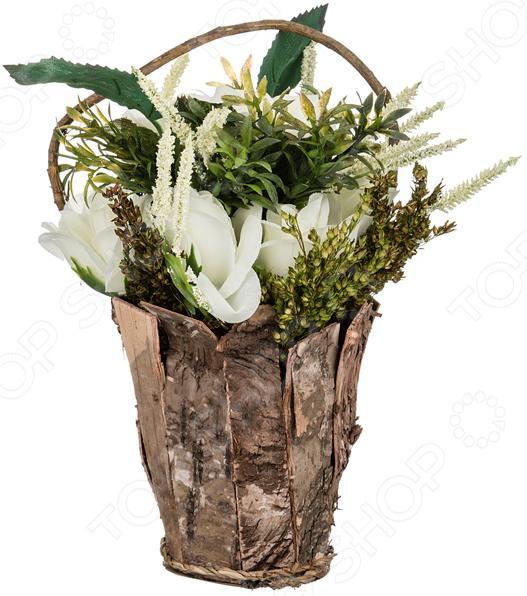 Декоративные цветы 70-538 куплю декоративные растения в севастополе