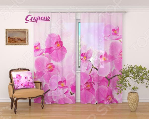 Фототюль Сирень Сиреневая орхидея высококачественное и практичное изделие, которое наполнит интерьер квартиры уютом и теплом. Несомненно, от дизайна, расцветки материала тюля зависит то, насколько комфортно мы будем чувствовать себя в помещении. Ведь любой текстиль на окнах носит не только декоративный характер, но и ограждает нас от шумного и пестрого внешнего мира. Лучшим решением в таком случае является тюль из матовой вуали. Ее полотняное переплетение достаточно плотное, чтобы подарить вам ощущение уединения и защищенности, но при этом она не утяжеляет помещение, что очень важно. Тюль из вуали может использоваться самостоятельно например, без портьер. Тюль представлен красивейшим принтом, который восхищает своей реалистичностью и насыщенностью красок. Он станет великолепным и органичным дополнением гостиной, спальни или детской комнаты. Тюль длительное время будет украшать жилище, а уход за ним потребует от вас минимум усилий.