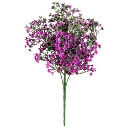 Купить Декоративные цветы Волшебная страна «Камнеломка»