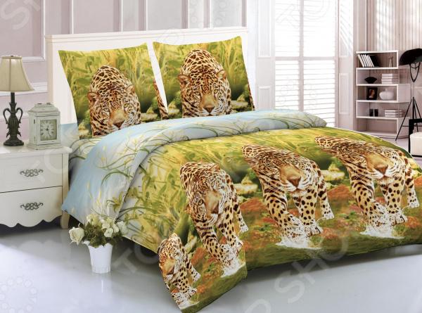 Комплект постельного белья Amore Mio Nairobi. 1,5-спальный