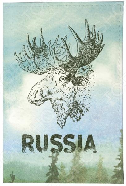Обложка для паспорта кожаная Mitya Veselkov «Лось» визитница mitya veselkov лось