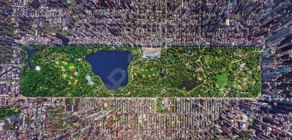 Пазл 3000 элементов Educa «Центральный парк, Нью-Йорк» пазлы educa пазл нью йорк коллаж 1000 элементов