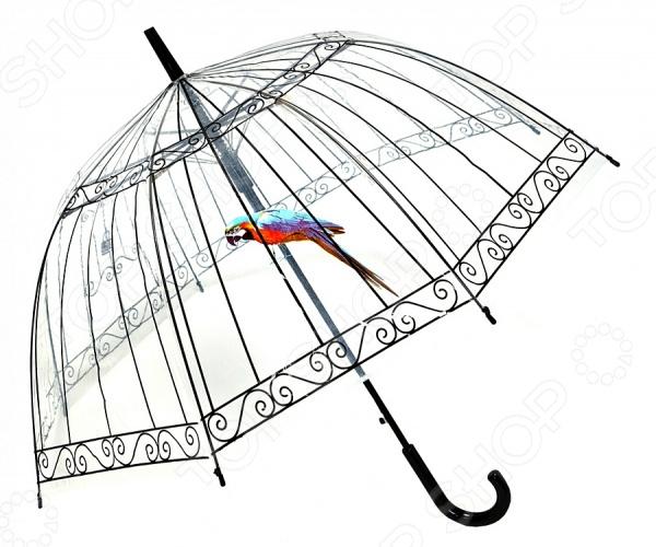 Зонт-трость Райская птица 1