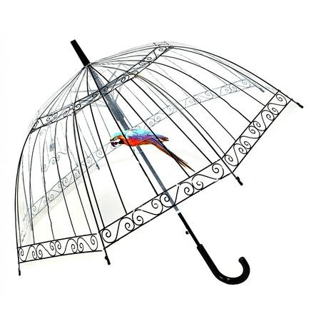 Купить Зонт-трость Райская птица