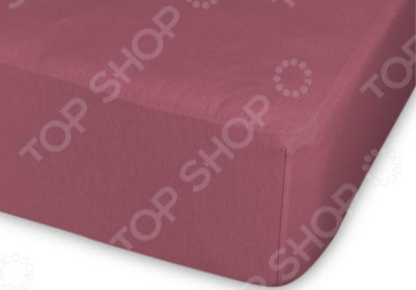 Простыня трикотажная на резинке Cleo гладкокрашеная. Цвет: темно-лиловый простыня на резинке cleo 160х200 см cl