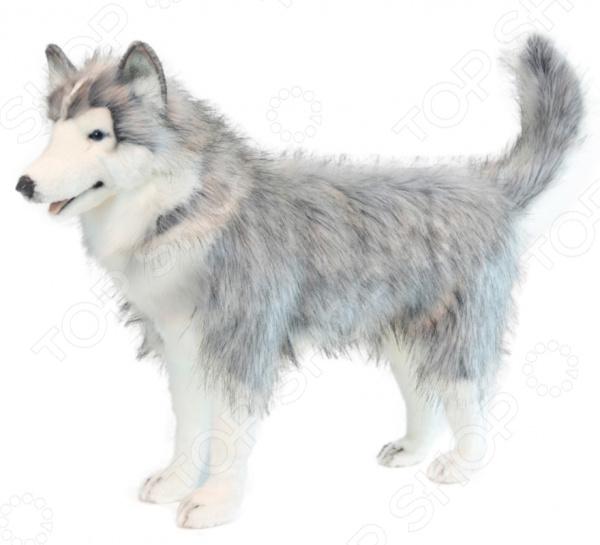Мягкая игрушка Hansa «Хаски серый» 6034 мягкие игрушки hansa собака породы сибирский хаски 40 см