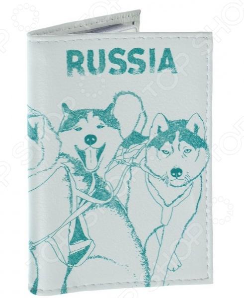 Обложка для автодокументов кожаная Mitya Veselkov «Сибирские хаски» щенков хаски в балашихе