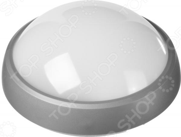 Светильник светодиодный Stayer Profi PROLight 57362-100-S