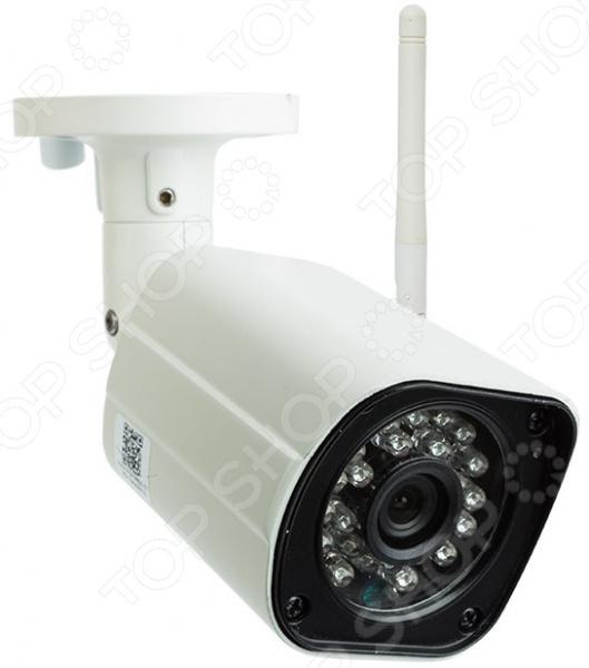 IP-камера с микрофоном Rexant 45-0274