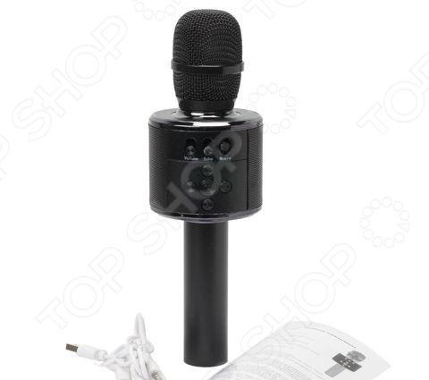Микрофон для караоке MD-01    /Черный