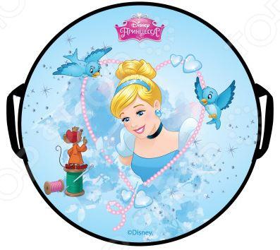 Zakazat.ru: Ледянка круглая Disney «Принцессы»