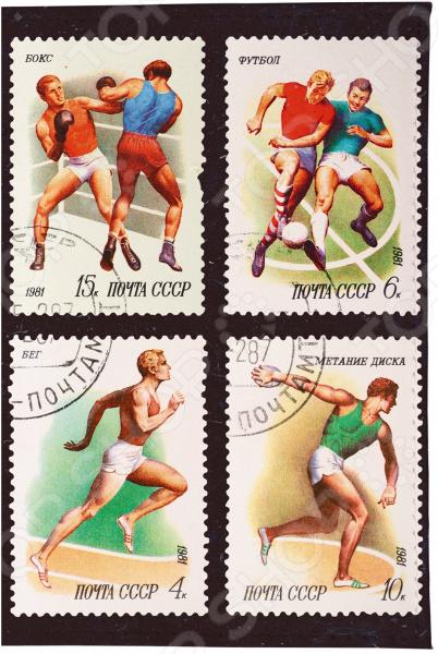Визитница Mitya Veselkov «Спорт: марки 1» визитницы mitya veselkov визитница олени на черном