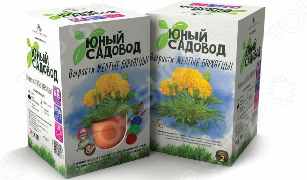 Набор для выращивания Юный Садовод «Вырасти желтые бархатцы» наборы для выращивания растений вырасти дерево набор для выращивания ель канадская голубая