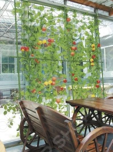 Комплект для вьющихся растений «Живая изгородь»