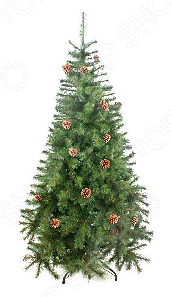 Ель новогодняя Новогодняя сказка «Венская» с шишками