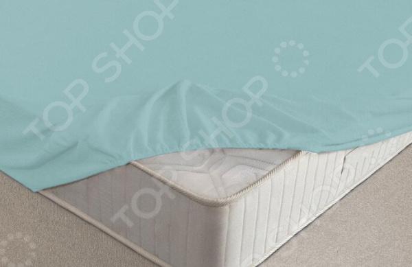 Простыня на резинке Ecotex махровая. Цвет: голубой