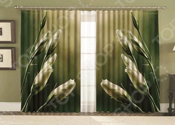 Комплект фотоштор с тюлем «Зелень»