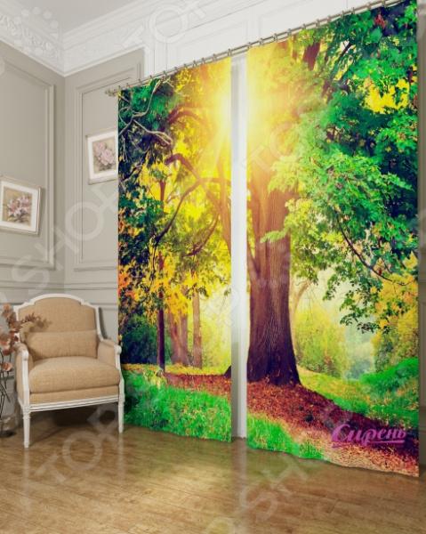 Фотошторы Сирень «Дерево в парке»