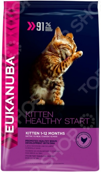 Корм сухой для котят Eukanuba Kitten Healthy Start