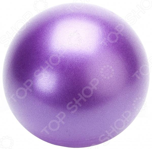 Zakazat.ru: Мяч Bradex «Фитбол-25». В ассортименте