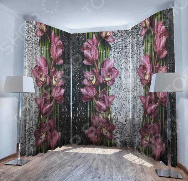 Фототюль ТамиТекс «Орхидея на стекле»