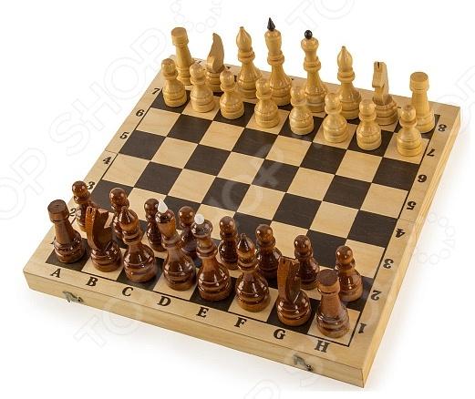 Шахматы гроссмейстерские в комплекте с доской Колорит