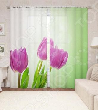 Фотошторы Сирень «Весенние тюльпаны» цены