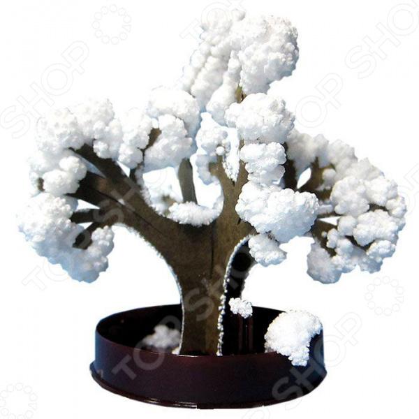 Набор для выращивания Ранок «Японский сад кристаллов. Снежный бонсай» бумбарам набор для выращивания кристаллов желтый магия кристаллов
