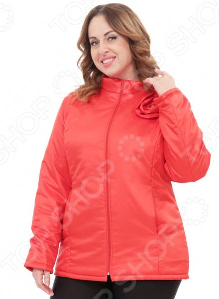 Куртка СВМ-ПРИНТ «Тонкий вкус с воротником». Цвет: красный