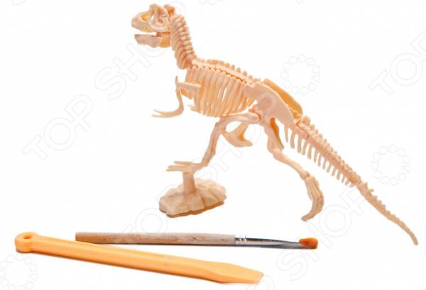 Набор юного археолога Bradex «Раскопки: тиранозавр» Набор юного археолога Bradex «Раскопки: тиранозавр» /