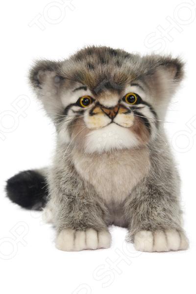 Мягкая игрушка Hansa «Котенок манула»
