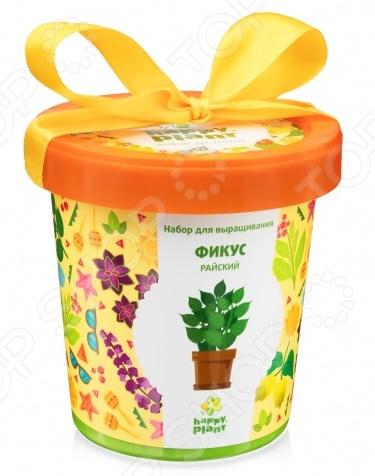 Набор для выращивания Happy Plant «Горшок. Фикус райский» набор для опытов и экспериментов happy plant горшок фикус райский