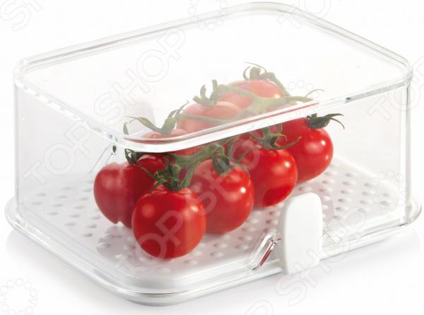 Контейнер для хранения продуктов в холодильнике малый Tescoma Purity