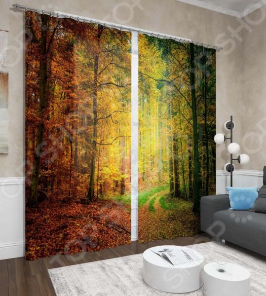 Фотошторы Сирень «Осенний лес» шторы томдом фотошторы осенний дуб