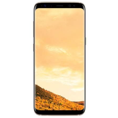 Купить Смартфон Samsung Galaxy S8 64Gb