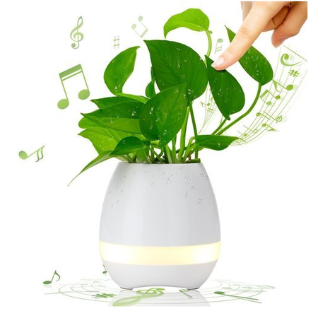 Купить Кашпо для цветов с музыкой и подсветкой Music Flower Pon. В ассортименте