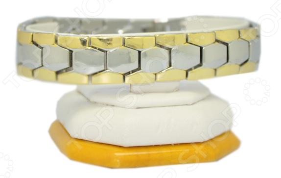 Биомагнитный браслет мужской «Авиценна»