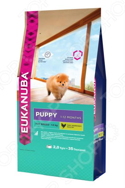 Корм сухой для щенков миниатюрных пород Eukanuba Puppy Toy Breed спб корм корм для щенка бенто кронен