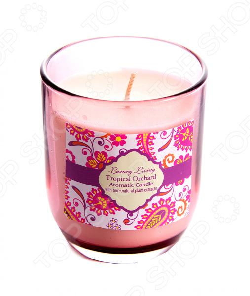 Свеча ароматическая «Тропическая орхидея» - артикул: 935880