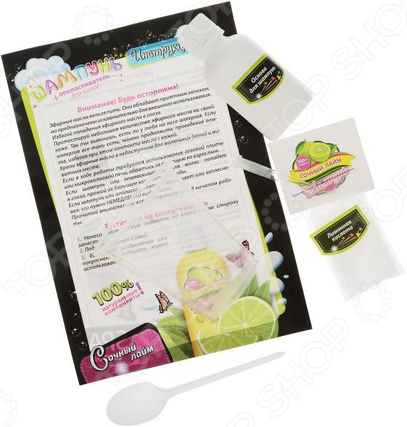 Набор для детского творчества Ранок «Сочный лайм» набор для детского творчества ранок фоторамочка 2 в 1 настроение и принцесса