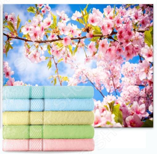 Набор полотенец махровых Aquarelle «Весна»