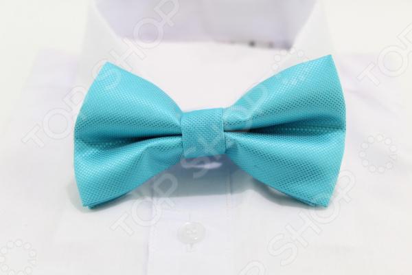 Галстук-бабочка Stilmark 1737308 бабочки magnetiq галстук бабочка