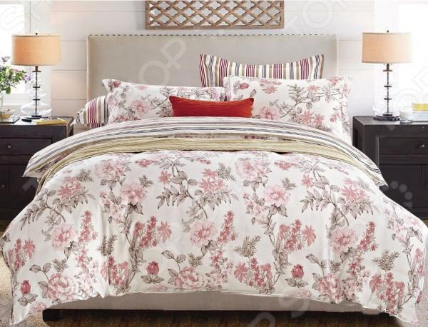 Комплект постельного белья Cleo 288-SL