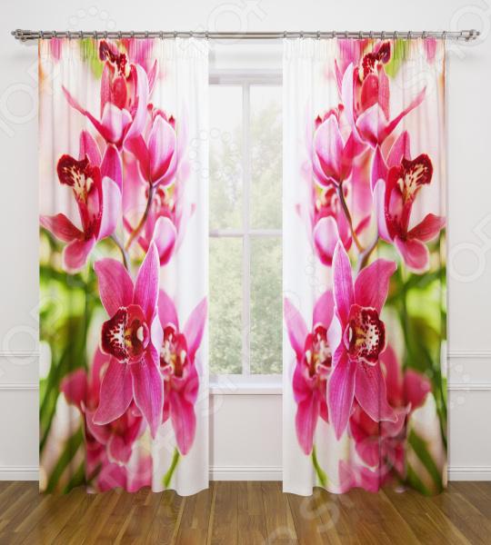 Фотошторы Стильный дом «Душистая орхидея»
