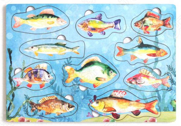 Игра развивающая «Рамка-вкладка: Рыбы России»    /
