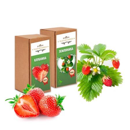 Купить Набор для выращивания «Домашняя ягодница»