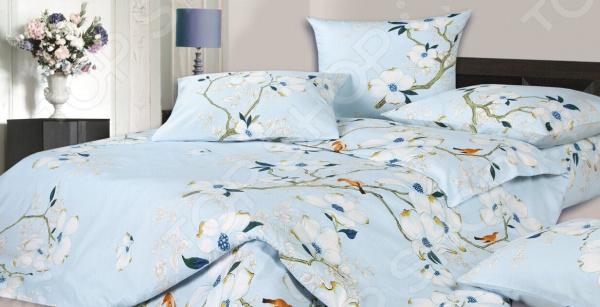 Комплект постельного белья Ecotex «Гармоника. Соло»